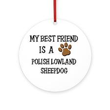 My best friend is a POLISH LOWLAND SHEEPDOG Orname