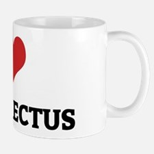 I Love Homo Erectus Mug
