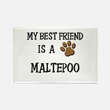My best friend is a MALTEPOO Rectangle Magnet