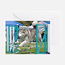 Alaskan Malamute Greeting Card