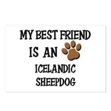 My best friend is an ICELANDIC SHEEPDOG Postcards
