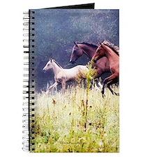 Galloping Horses Journal