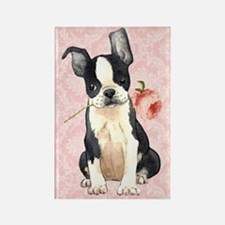 Boston Terrier Rose Rectangle Magnet