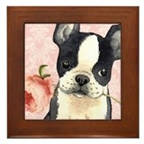 Boston terrier Framed Tiles