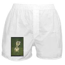 "Faces ""Klee"" Boxer Shorts"