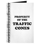 Traffic Cones Property. Journal