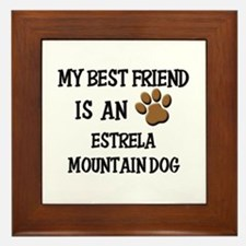 My best friend is an ESTRELA MOUNTAIN DOG Framed T