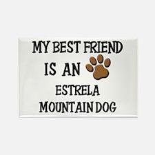 My best friend is an ESTRELA MOUNTAIN DOG Rectangl