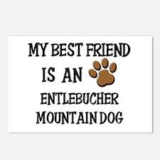 My best friend is an ENTLEBUCHER MOUNTAIN DOG Post