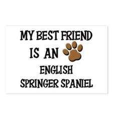 My best friend is an ENGLISH SPRINGER SPANIEL Post