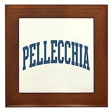 Pellecchia Collegiate Style Name Framed Tile