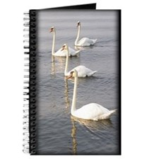 Swans Journal