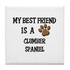 My best friend is a CLUMBER SPANIEL Tile Coaster