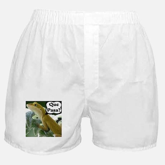 Que Pasa Anole Boxer Shorts