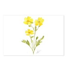 Cinquefoil Postcards (Package of 8)