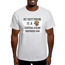 My best friend is a CENTRAL ASIAN SHEPHERD DOG Lig
