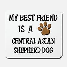 My best friend is a CENTRAL ASIAN SHEPHERD DOG Mou