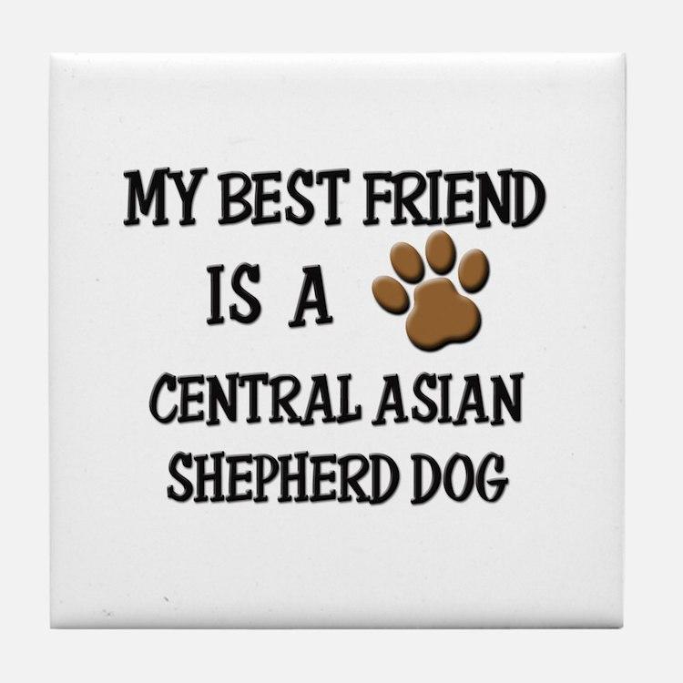 My best friend is a CENTRAL ASIAN SHEPHERD DOG Til