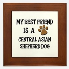 My best friend is a CENTRAL ASIAN SHEPHERD DOG Fra