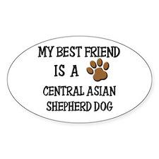 My best friend is a CENTRAL ASIAN SHEPHERD DOG Sti