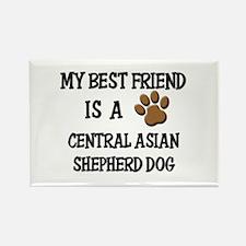 My best friend is a CENTRAL ASIAN SHEPHERD DOG Rec