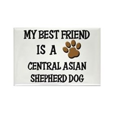 My best friend is a CENTRAL ASIAN SHEPHERD DOG Rec