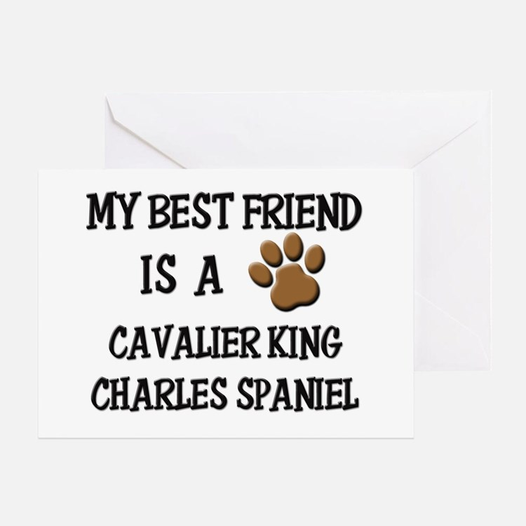 My best friend is a CAVALIER KING CHARLES SPANIEL