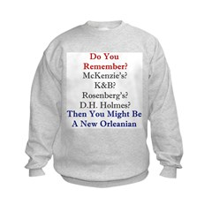 New Orleans and the South Sweatshirt