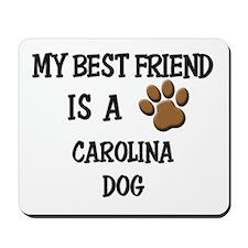 My best friend is a CAROLINA DOG Mousepad
