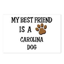 My best friend is a CAROLINA DOG Postcards (Packag