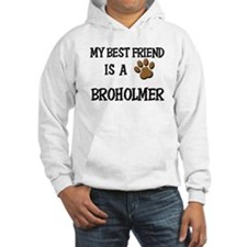 My best friend is a BROHOLMER Hoodie
