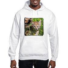 Fractalius Bobcat Kitten Hoodie