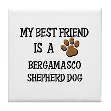 My best friend is a BERGAMASCO SHEPHERD DOG Tile C