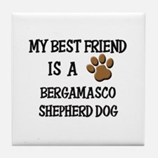 My best friend is a BERGAMASCO SHEPHERD DOG Tile C
