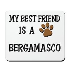My best friend is a BERGAMASCO Mousepad