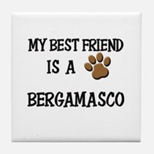 My best friend is a BERGAMASCO Tile Coaster