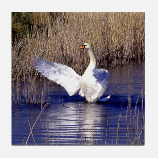 Trumpeting Swan Tile Coaster