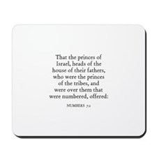 NUMBERS  7:2 Mousepad