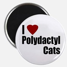 I Love Polydactyl Cats Magnet