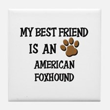My best friend is an AMERICAN FOXHOUND Tile Coaste
