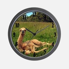 Reclining Alpaca Wall Clock