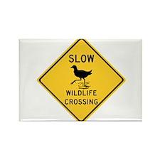 Slow Wildlife Crossing, Australia Rectangle Magnet