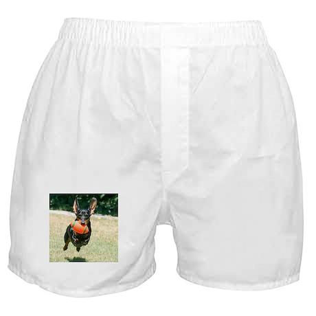 Football Doxie Boxer Shorts