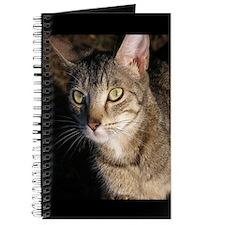 Juliette the Cat Journal