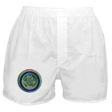 Abstract Peacock Boxer Shorts
