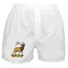 Utah Elk Boxer Shorts