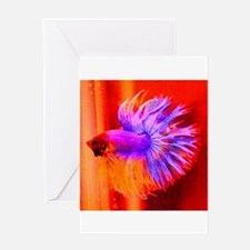 Gorgeous Crowntail Greeting Card