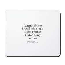 NUMBERS  11:14 Mousepad