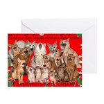 Somali Cat Christmas Cards (Pk of 10)