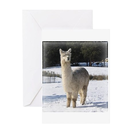 Alpaca In the Snow Greeting Card